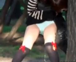 (お漏らし隠盗ムービー)ビールで泥酔した女性が公園でパンツも脱がずに立ったまま尿を漏らした決定的瞬間wwwwww